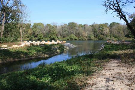 Gefluteter Kanal zur Belebung der Auenwälder
