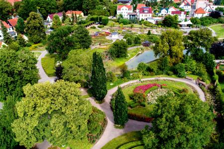 Blütenmeer im Rosengarten