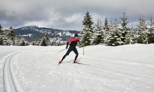 Herrliche Wintersportbedingungen In Bodenmais Bodenmais Tourismus