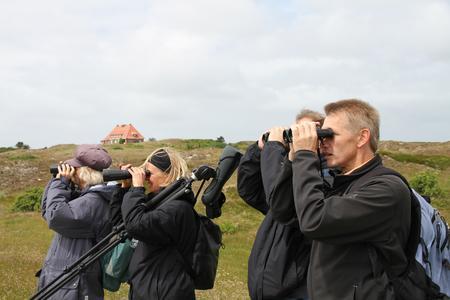 Geo Tag der Artenvielfalt Vogelbestimmung Foto Nationalparkverwaltung