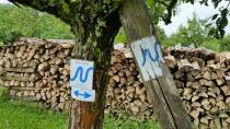 Neckarsteig Markierungszeichen - Blaues N der Neckarschleife