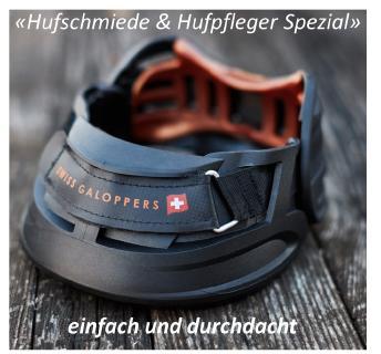 Swiss Galoppers   Einfach und durchdacht.