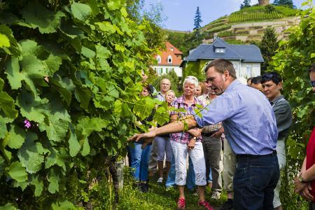 Tage des offenen Weinguts in Sachsen
