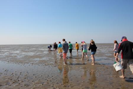 Von der Jugendherberge Husum aus starten die Schüler zum Klassenausflug ins Wattenmeer