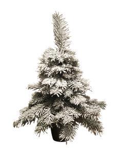 Mini-Weihnachtsbaum mit Schnee.png