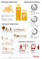 Infografik Radreisen Münsterland