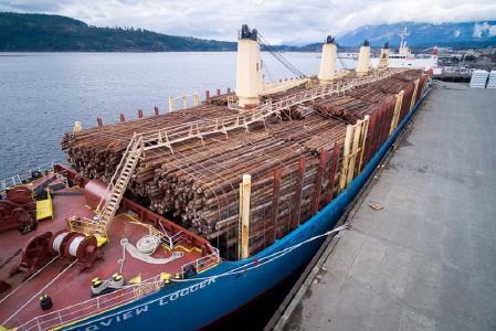 Das vom Holzhandelsunternehmen Claus Rodenberg Holzkontor gecharterte Schiff bringt Fichtenholz