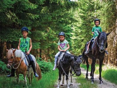 Im Hotel Bayerwaldhof in Bad Kötzting (Landkreis Cham) können die Gäste einen Reiturlaub mit ihrem eigenen Pferd oder einem Schulpferd genießen / Foto: obx-news/Hotel Bayerwaldhof