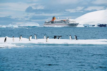 BREMEN_Antarktis_Paulet_Island_Hapag_Lloyd_Kreuzfahrten.jpg