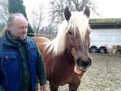 Swiss Galoppers: Der Schweizer Huforthopäde Roger Hunziker aus Oftringen