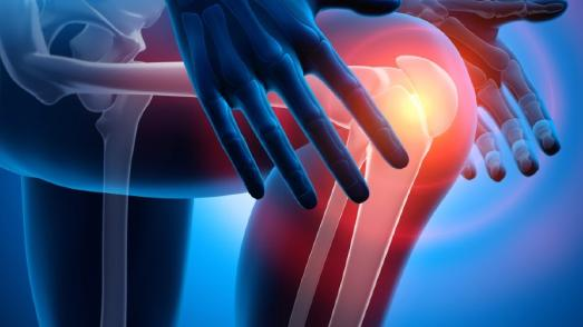 Die gezielte Zufuhr kurzkettiger Fettsäuren könnte helfen, die Knochen zu stärken und den Verlauf chronisch-entzündlicher Gelenkerkrankungen positiv zu beeinflussen. Das haben Forscher der Friedrich-Alexander-Universität Erlangen-Nürnberg herausgefunden.Foto: Fotolia