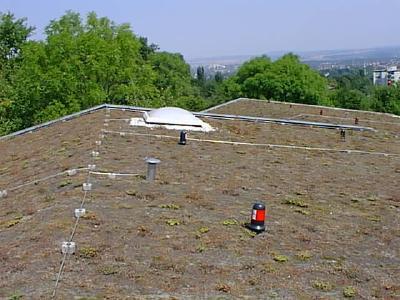 re-natur steht Nutzern für die Pflege ihrer Dachbegrünung zur Verfügung