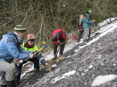 Ehrenamtliche im Bergwaldprojekt bepflanzen eine Steinbruchhalde nahe Schulenberg im Oberharz mit Weidenstecklingen
