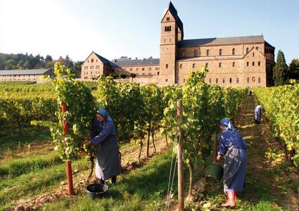 Nonnen der Abtei St. Hildegard bei Rüdesheim am Rhein im klostereigenen Weinberg, Copyright: Rüdesheim Tourist AG