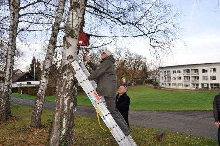 Dr. Wolfgang Rapp, Vorsitzender des Nabu Göppingen nimmt selbst den Hammer in die Hand, seine Leiter sichert Klaus Riegert