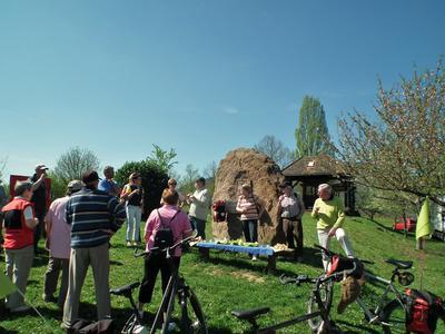 Picknick bei Mandelblüten Radtour