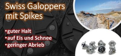 Swiss Galoppers   Guter Halt auf Eis und Schnee