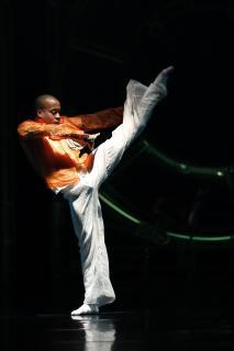 Magnificat Leizpiger Ballett / Bild: ©Ida Zenna