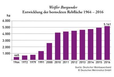 Entwicklung Weissburgunder