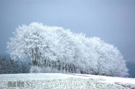 Winterzauber in der Eifel: Last-minute-Städtereise – fünf Tage Kurzurlaub in Daun