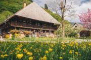 Schwarzwaldhaus im Wiesental