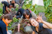 Die Ackerpause: Gemüse pflanzen und Teamgeist ernten / Bild: Claudia Günther