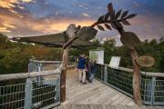 Seit 2005 ist der Baumkronenpfad im Nationalpark Hainich ein beliebtes Ausflugsziel Naturbegeisterte jeden Alters.