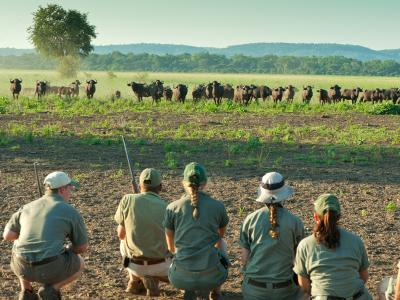 Safari-Guide Ausbildung mit Travel-and-Personality