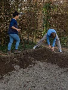 Ermöglicht durch den hochschuleigenen Projektfonds Nachhaltigkeit und Sachspenden verschiedener Firmen haben die Studierenden zahlreiche Gemüsebeete auf dem Campus Haste angelegt