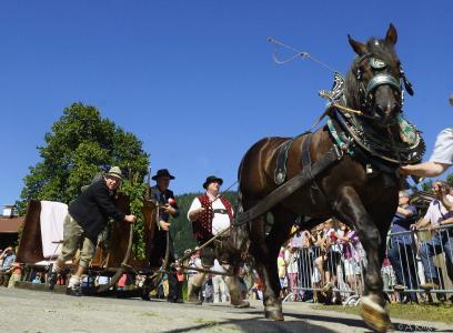 Wildschönauer Talfest - Festumzug