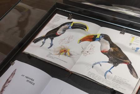 Präsentation mit Arbeiten des Zeichenkurses von Katja Rosenberg. Foto: Museum Wiesbaden / Bernd Fickert