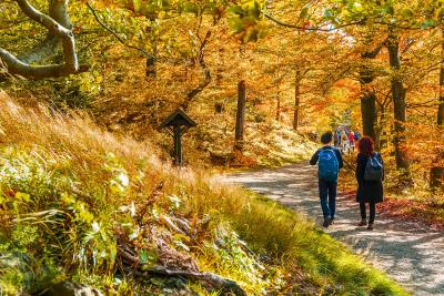 Herbst Wandern Bad Harzburg Franziska Pönisch