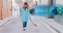 Coronavirus: Auch eine Gefahr für unsere Haustiere?
