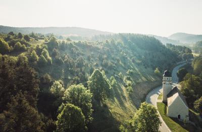 Die Wacholderheiden im Amberg-Sulzbacher Land sind ein besonders empfindliches Biotop / Mirko Fikentscher
