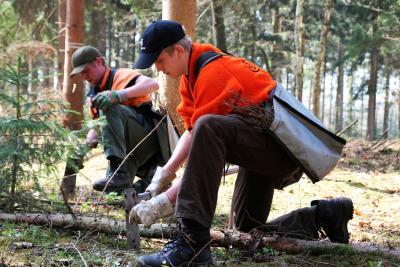 Internationaler Tag der Wälder