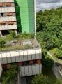 Auch die Vorbereitungen zur Anlage ganzer Gärten und begehbarer Parklandschaften auf Dächern gehört zum Berufsbild des Dachdeckerhandwerks.