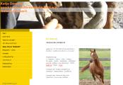 Website Promotion Katja Doering