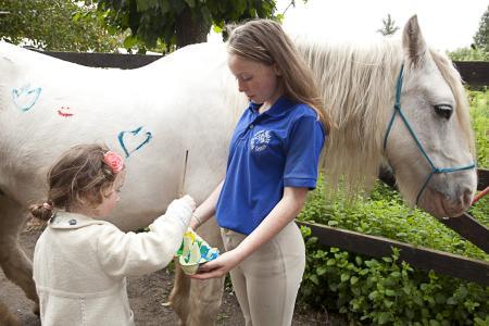 Pony bemalen Hilfsbereitschaft Geduld