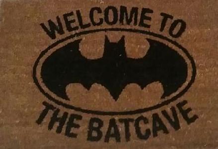 Bat Night