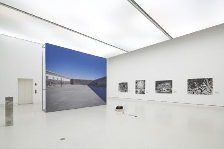 Uriel Orlow: Grey, Green, Gold, 2015–2017 / The Memory of Trees, 2016, Photo: Norbert Miguletz, VG Bild-Kunst, Bonn 2019