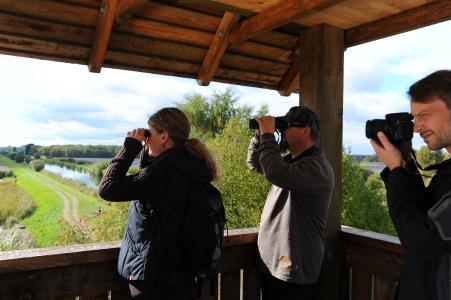 Grandiose Ausblicke garantiert die Dütschower Hochbrücke inmitten der Natur