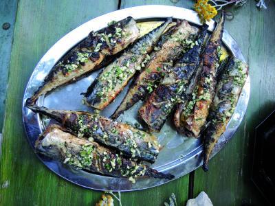 Tagesfrisch gefangene Makrelen vom Grill.