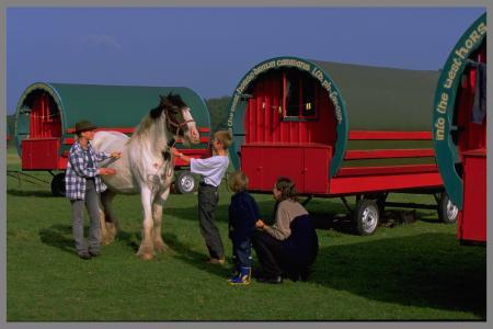 Familie mit Pferd und Caravan Zusammenarbeit Verantwortung