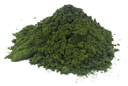 Algae Biomass Powder, Credit: BLOOM