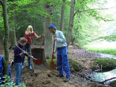 Foto (Nationalparkamt Müritz): Freiwillige im Ökologischen Jahr Kasia Sterna, Ines Griephan und Marcel Kerba (v. l. n. r.) beim Arbeitseinsatz im Moor bei Carpin
