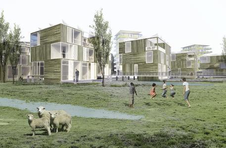Innovative Wohnkonzepte in der Wilhelmsburger Marschlandschaft