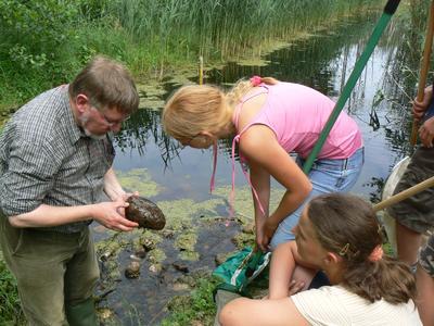 Prof. Dr. Mathias Grünwald mit Junior-Rangern auf Insektensuche in der Havel