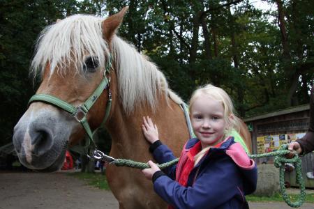 Wildpark MV / Blätterfest Ponyreiten