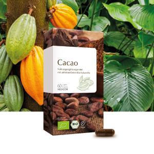 Cacao: Bio Kakaonibs, unfermentiert und ungeröstet
