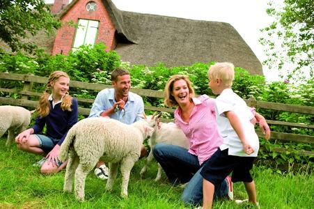 Der Countdown läuft - noch bis zum 14. November können urlaubsreife Familien am großen Familien-Casting teilnehmen